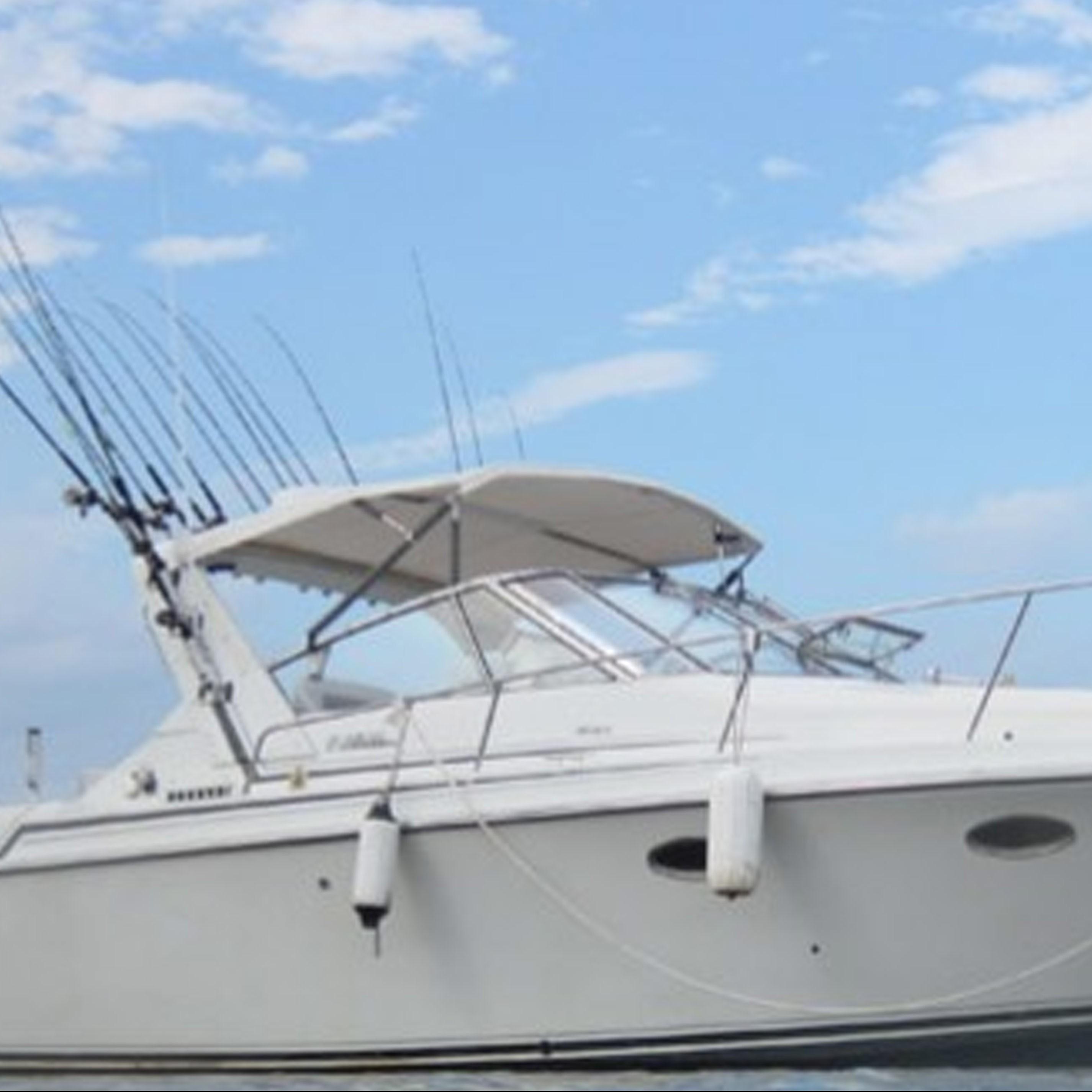 Superior sport fishing lake superior fishing charter for Lake superior fishing charters