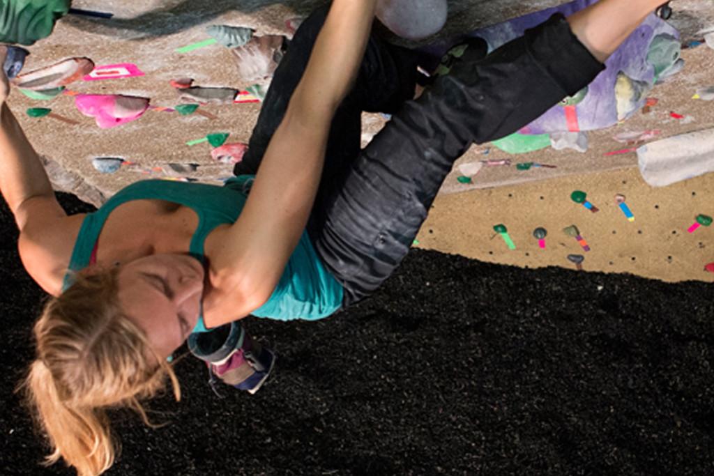 Vertical Endeavors Indoor Rock Climber