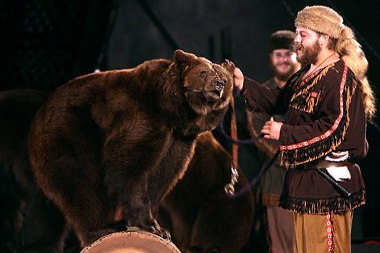 Shrine Circus Bear