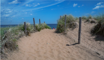 Park Point beach sand dunes