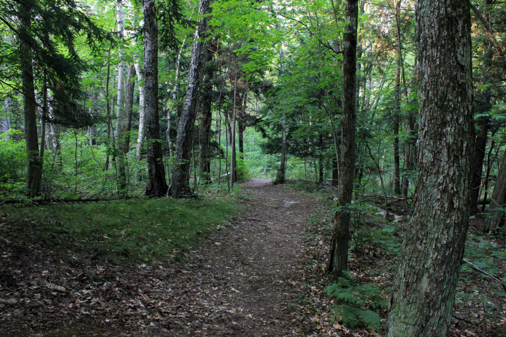 Point Beach Nature Hiking Trail