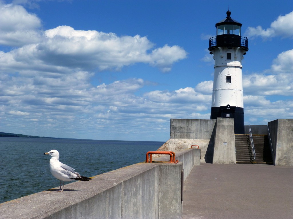 Canal Park, Duluth MN lighthouse pier and seagull