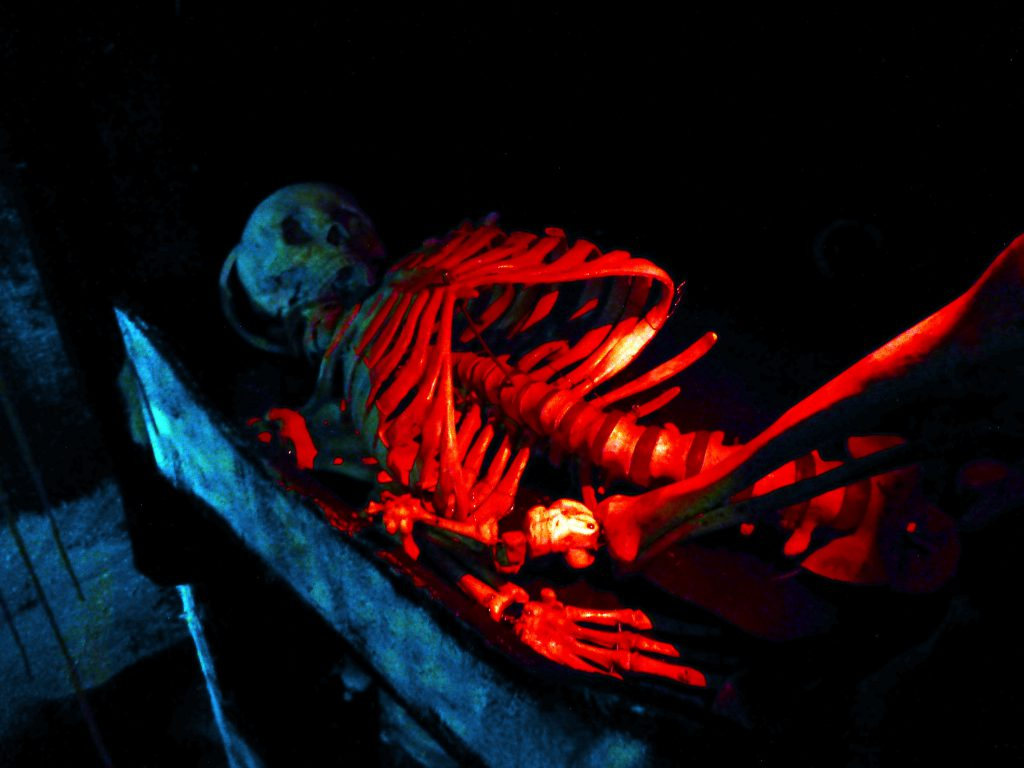 skeleton in a grave on the Haunted Ship
