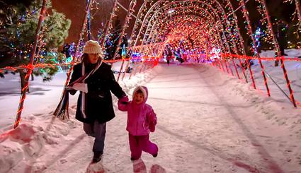 bentleyville tunnel of christmas lights